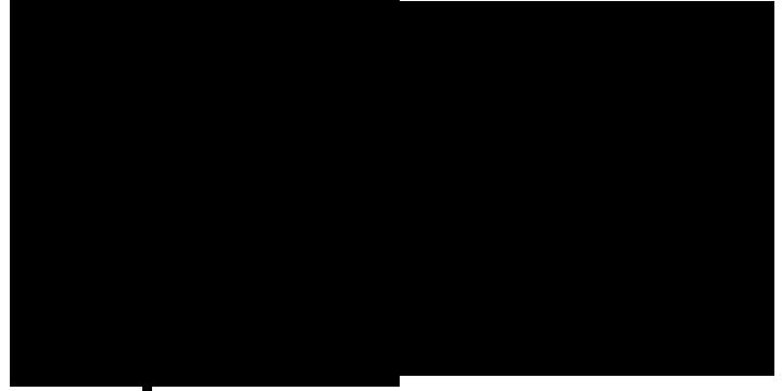 logo libbs negativo transparente